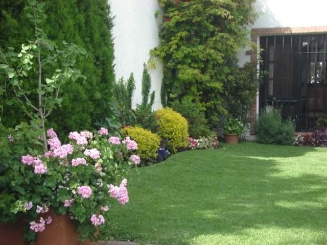 Areas verdes agrosemillas for Diseno de jardines caseros